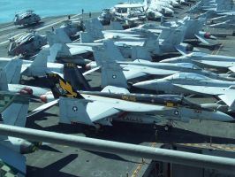 FA-18E Super Hornet - VFA-115 Eagles - NF-300 by shadeops21