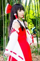 Eternal shrine maiden by Hitomi-Cosplay