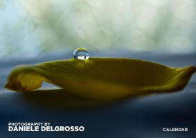 Photography Calendar by dandelgrosso