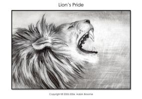 Lion's Pride by Adamb22