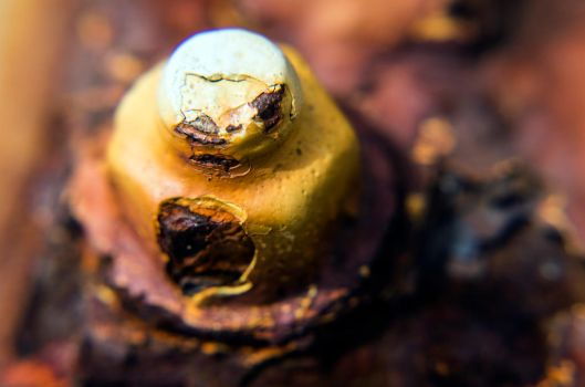 Really Rusty Bolt by ThatAudGirl
