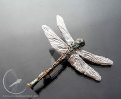 Dragonfly and clarinet by RekamiStworzone