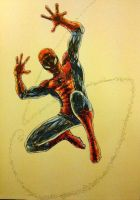 The amazing spider man by WB940618