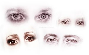 Eye compilation, graphite and charcoal by jane-beata