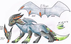 Reference: Ethan (Dragon Form) by Operia
