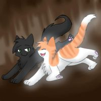 Hollyleaf and Fallen Leaves by Party-Yin