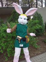 Bunny Link at ACen 2013 by LittleMarin
