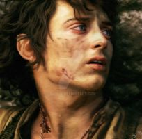 Frodo by silvije