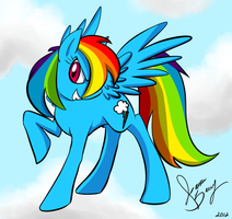RAINBOW DASH by WhiteFire-Inc