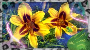 The tiger Lilies by mickeyrony