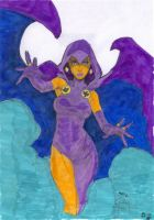 Raven 'Colab' by CDL113