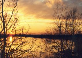 Sunset 2 River trent by tallon