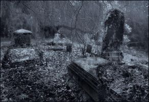 Forgotten and Alone by ParadisoPerso
