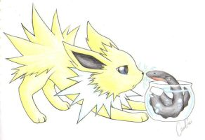 PKMN: Eeveelutions - Jolteon by Carro-chan