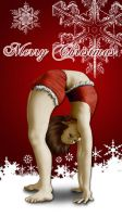 Merry Christmas 2014 by Aldric-Cheylan