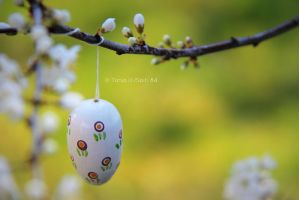 happy easter by spiti84