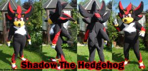 Shadow the Hedgehog Costume by Vixen-T-Fox