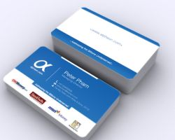 bussnis card alp by eltolemyonly