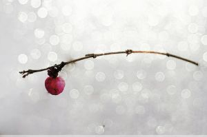 first one alive by propan3