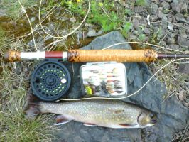 First Trout on My New Rod by flytier
