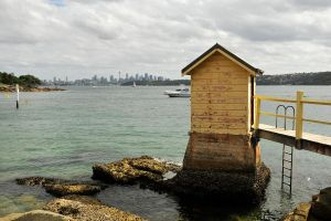 Sydney from Camp Cove by wildplaces