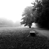 Foggy morning by XSini