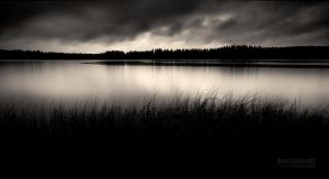 Dark Days II by JoniNiemela