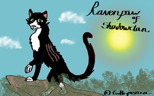 Ravenpaw again... by Golloperaa