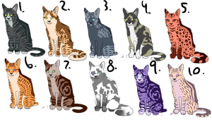[ OPEN ] Cat Adoptables by C-Adopts