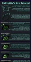 How I Make Sexy Cat/Animal Eyes by CALLYKITTY
