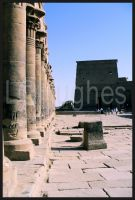 Philae by lehPhotography