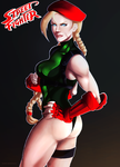 Cammy - Street Fighter V by shawbrando