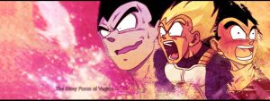 The Many Faces of Vegeta FB Cover by The-Potara-Fusion