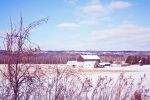 Barn In Winter by Cute-And-Bright