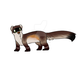 The Ferret Bandit-Rock by jenny96ist