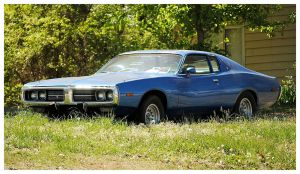 A Cool Dodge Sitting In The Weeds by TheMan268