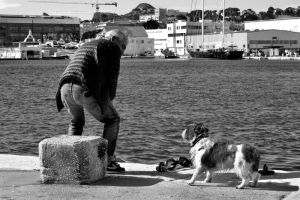 the dog and the unknown man II.... by Malcolm21