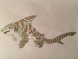 Tiger-...Shark? by Raventhys