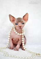 Naked Pearls by felill