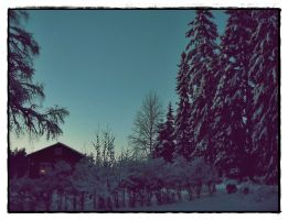 Swedish Winter Evening Part II by hannayoung