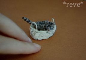 Miniature Shy Kitten * Handmade Sculpture * by ReveMiniatures