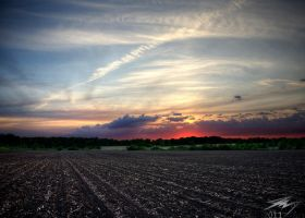 Indiana Sunset2 by Murphoto