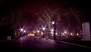 Park At Night by CybertronicStudios