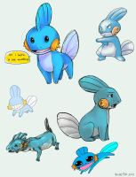 so i herd u liek mudkip by Blue-Fox
