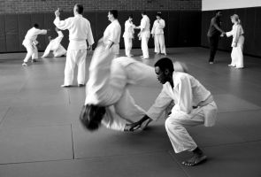 Aikido Seminar February 2014, 3 by bebelee
