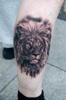 Lion by Matyas Csiga Halasz @ Dublin Ink by DublinInk