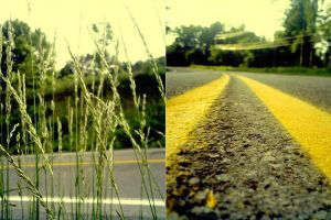 Diptych2 by ram-photography