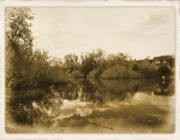 Sepia Lake View by Rozrr