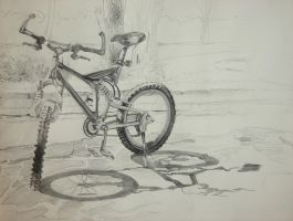Bicycle by seraphxviii