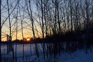 Cold Minnesotan Sunset by Theanimalparade